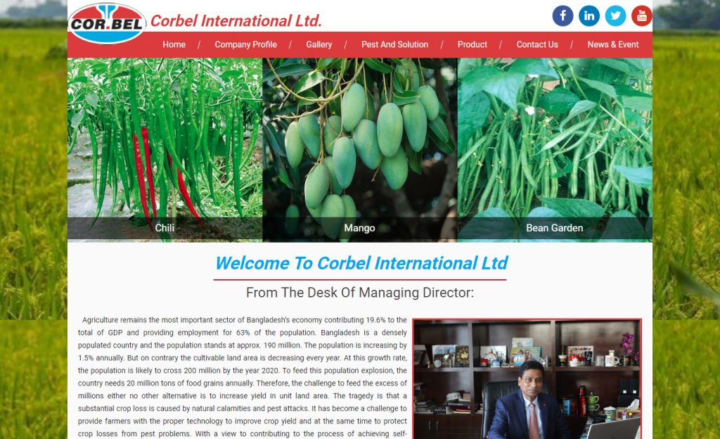 Corbel International Ltd